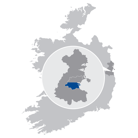caremark dublin south & south east