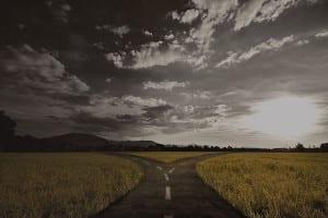 journey - Caremark